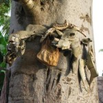 This tree is dedicated to a god and is labeled by animals bones tide around it.