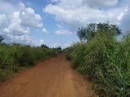 togo road 2